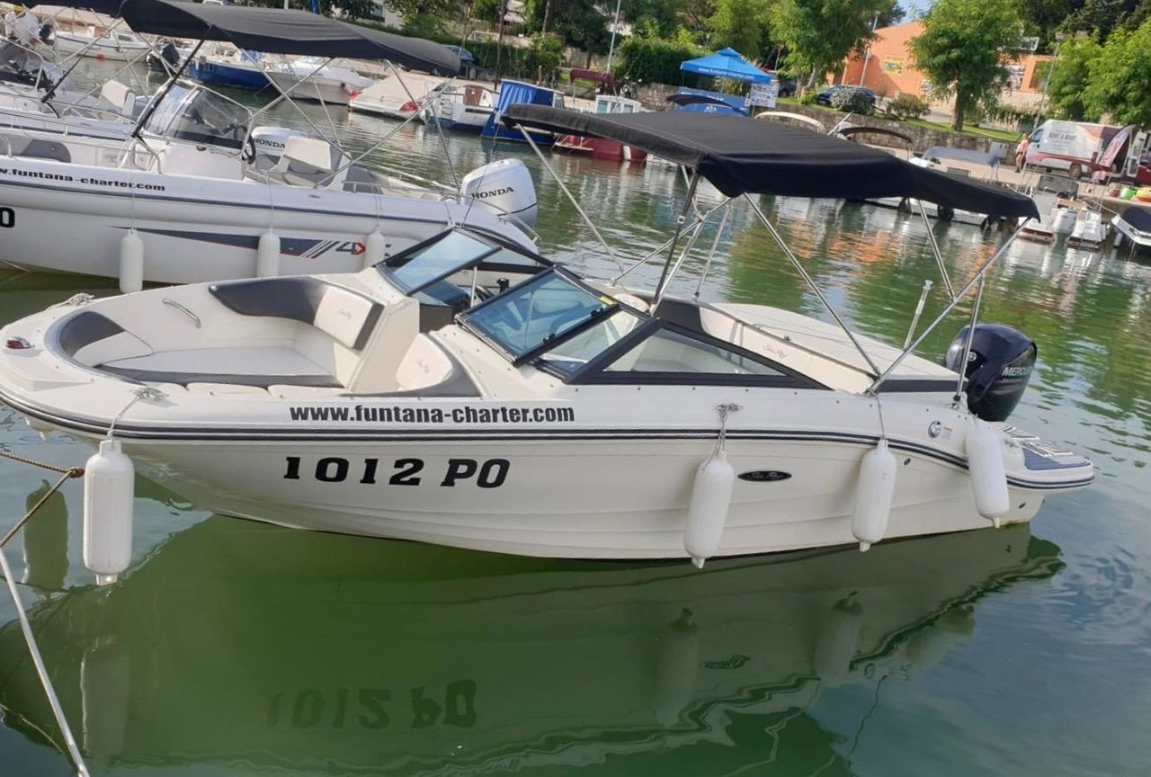 Sea Ray 19 Spxe OB - Bild 1