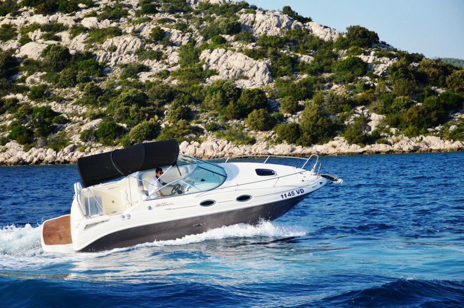 Sea Ray 255 SundancerBild 2