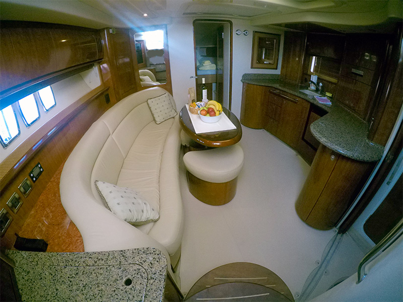 Sea Ray 455 - picture 3
