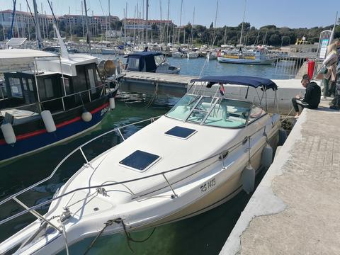 Sea Ray Sundancer 270